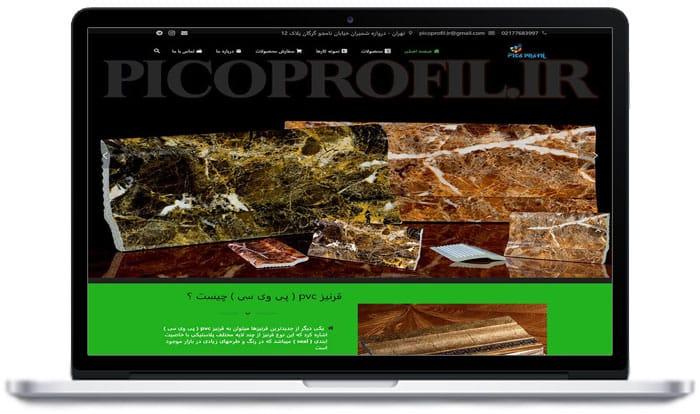 طراحی سایت پیکوپروفیل